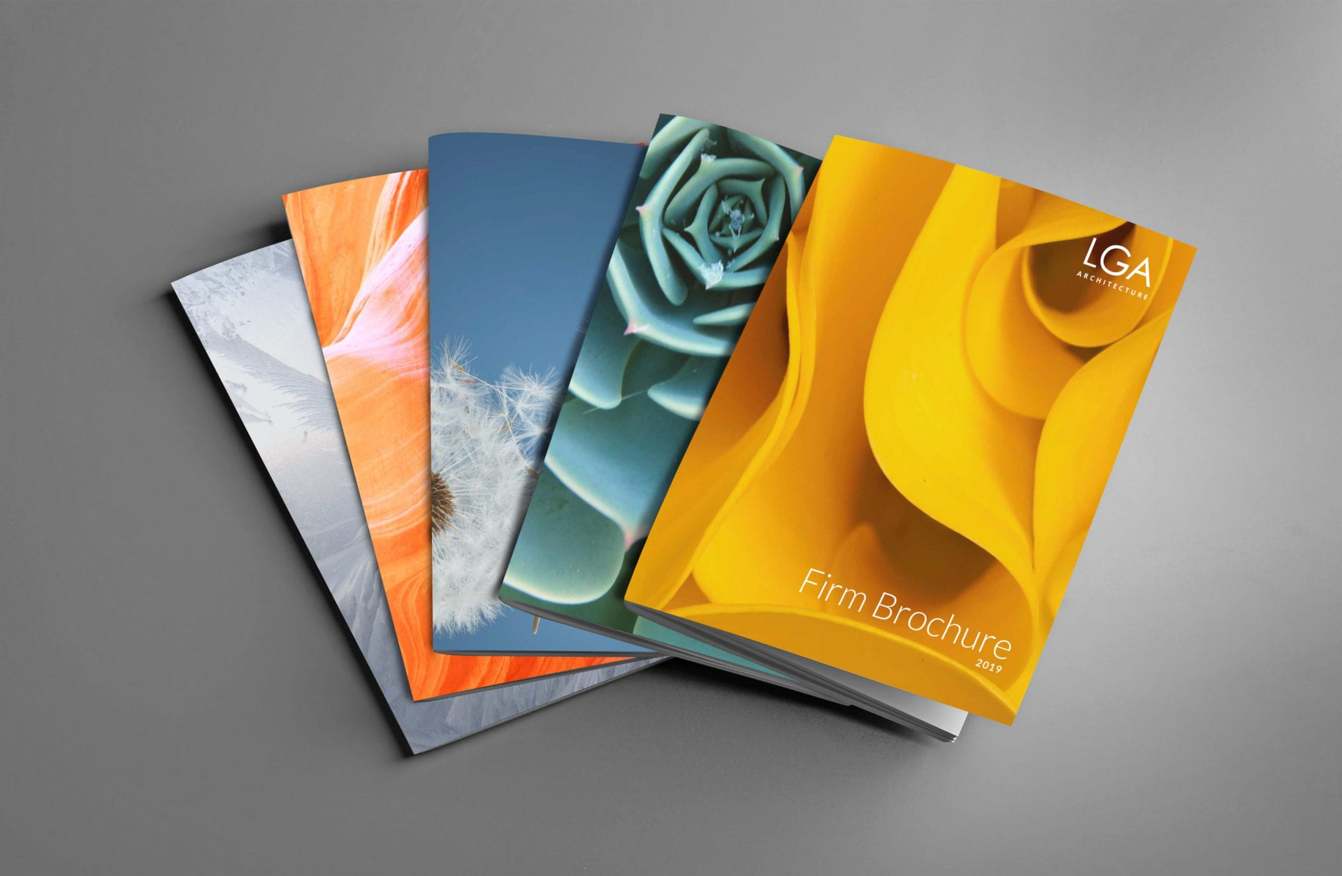 LGA Architecture firm brochures