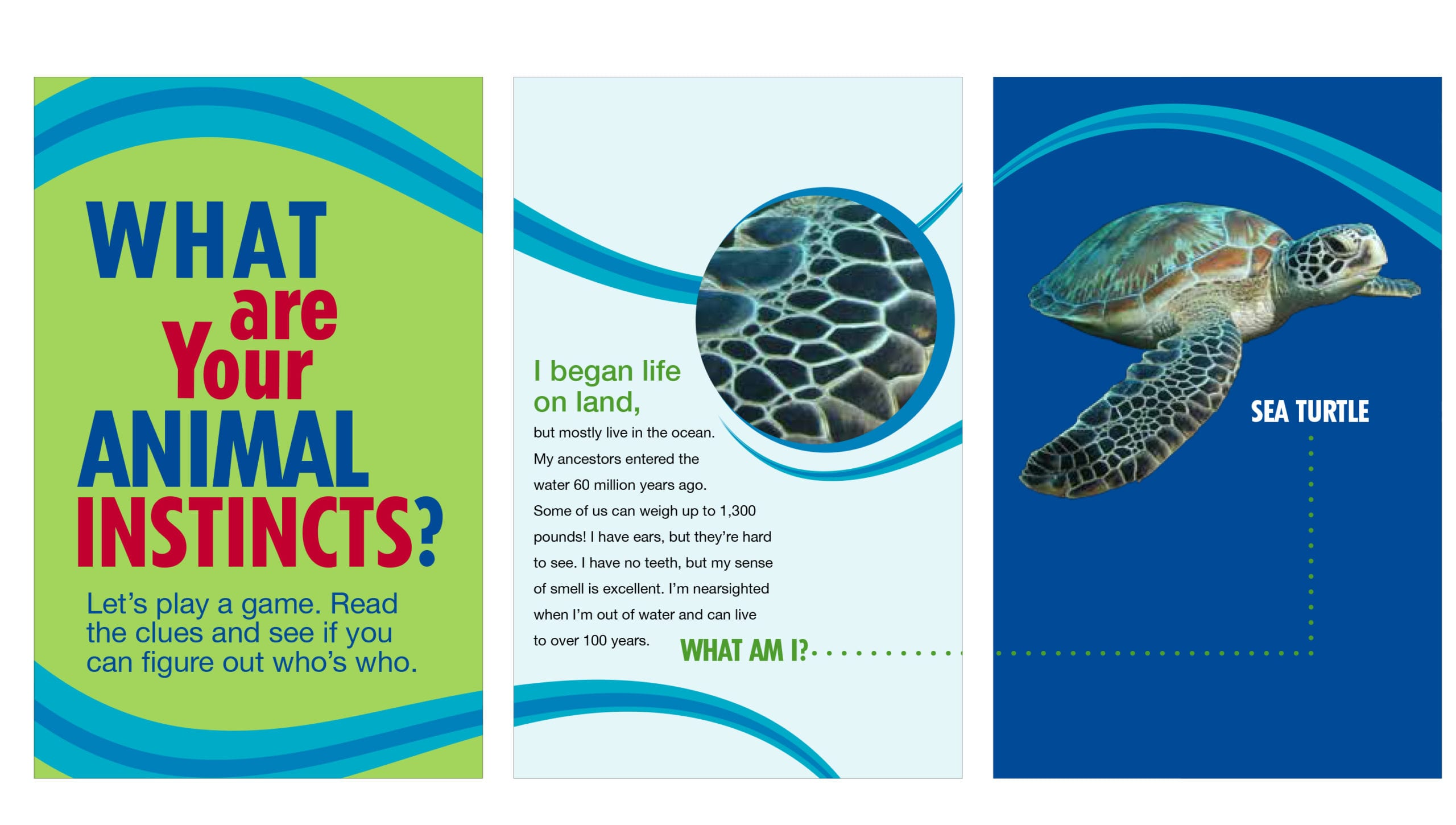 Posters with a guessing game titled, what are your animal instincts?