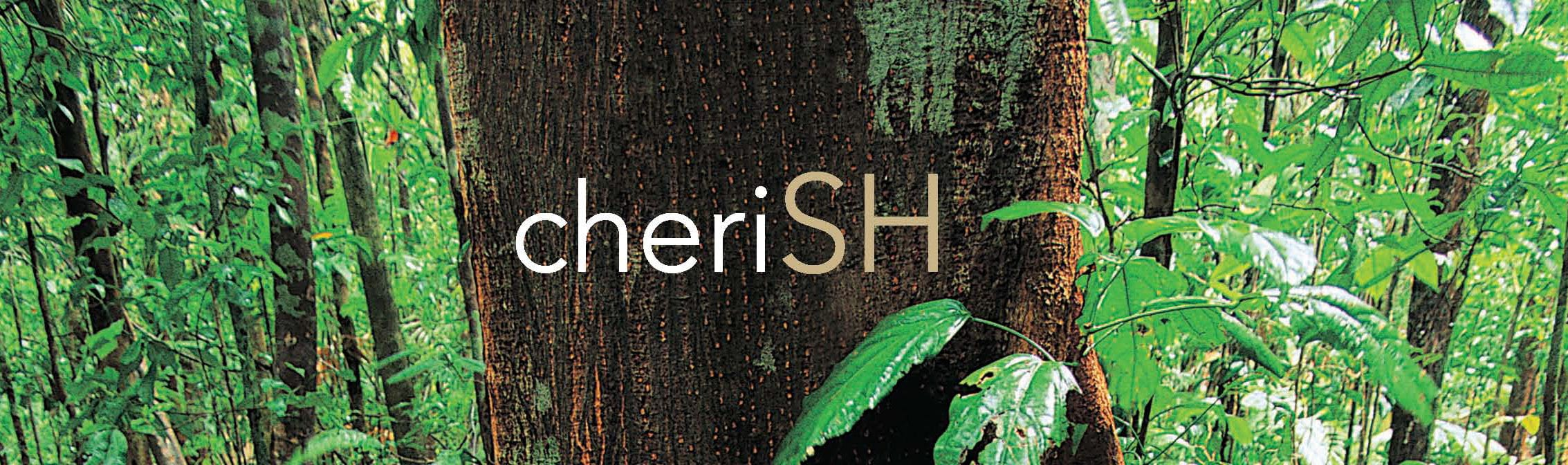 "The SH Architecture branding with the play on words: SH, with the words ""cheriSH"""